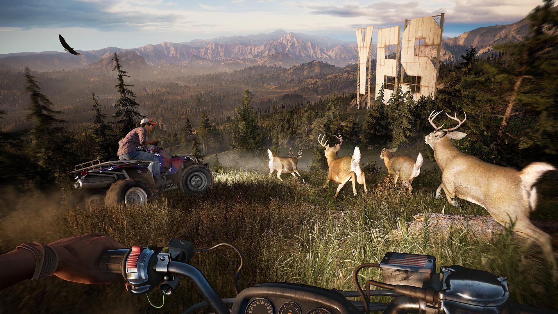 Far Cry 5, Campaña