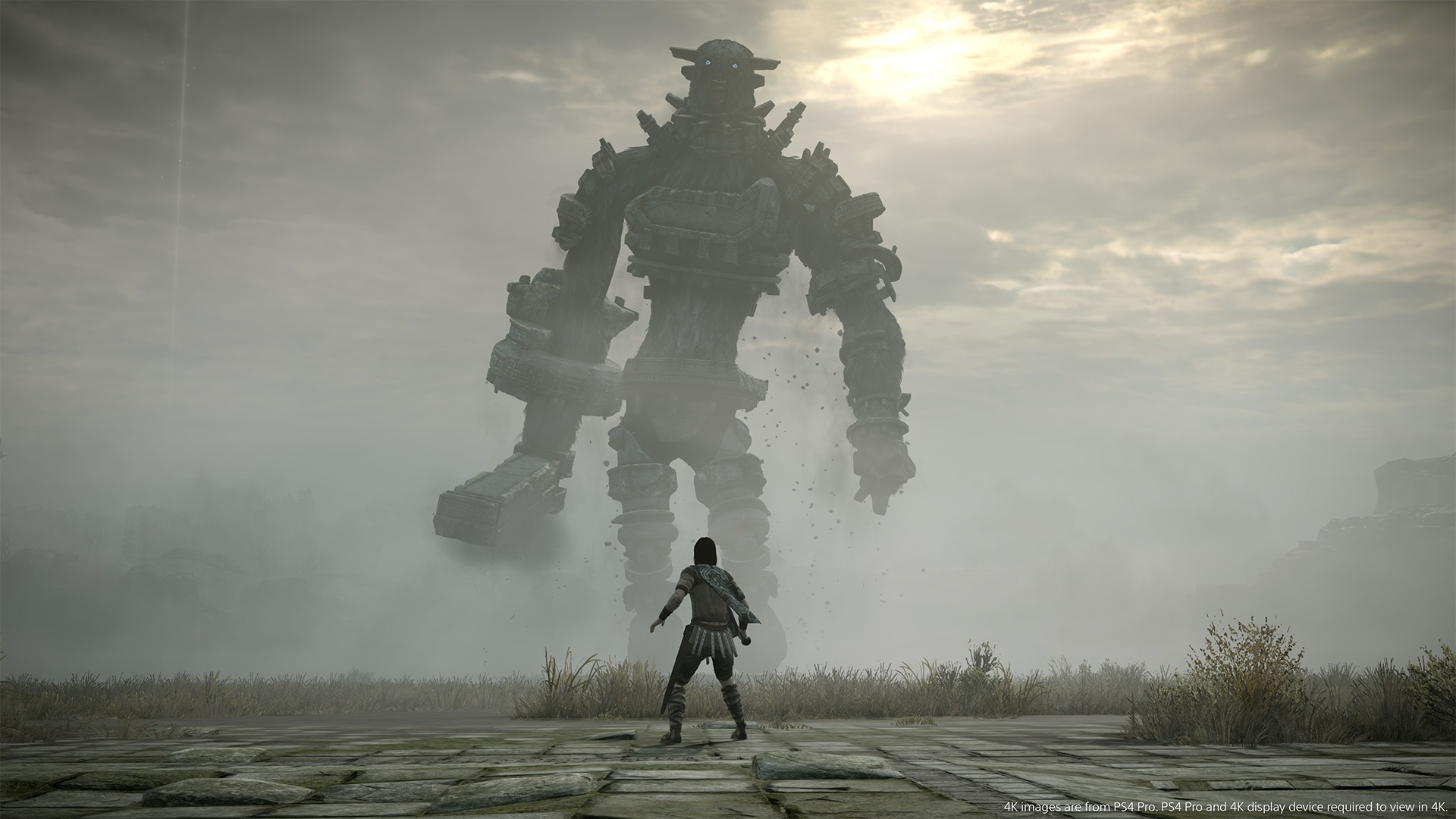 shadow of colossus spoiler